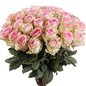 Букет роз Эсперанс