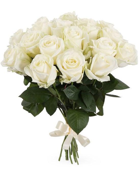 Букет 17 роз Аваланш 60/70 см - фото 7742