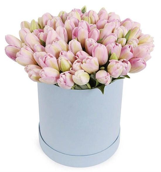 101 королевский тюльпан в коробке, жемчужные - фото 7835