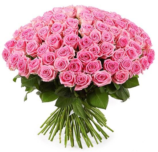 Букет 101 роза Аква - фото 7847