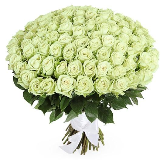 Букет 101 роза Грин Ти - фото 7849