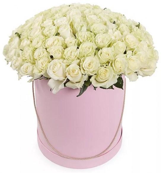 101 роза Мондиаль в шляпной коробке - фото 7858