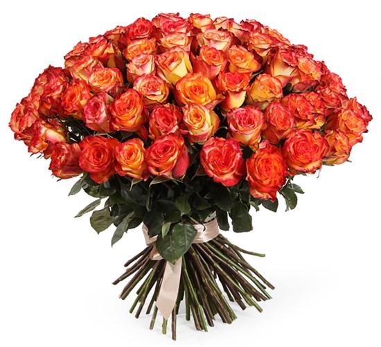 Букет 101 роза Хай Мэджик - фото 7862
