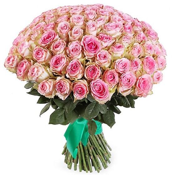 Букет 101 роза Эсперанс - фото 7865