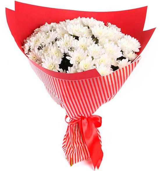 Букет 15 белых кустовых хризантем в красной бумаге - фото 7886