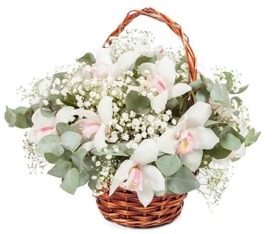 Букет с орхидеями Звезда родилась - фото 7895