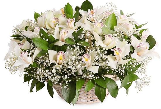 Букет с орхидеями Симфония в корзине - фото 7900