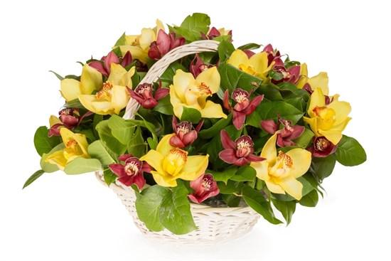 Букет с орхидеями Крошка Доррит в корзине - фото 7902