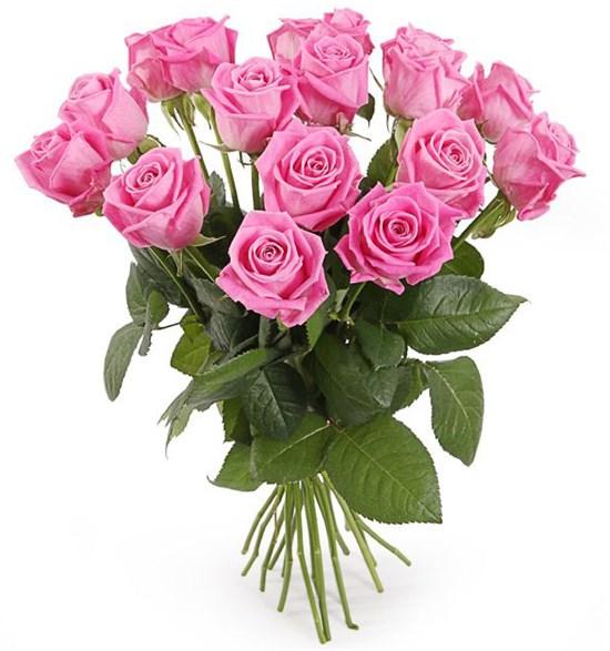 Букет 17 роз Аква - фото 7948