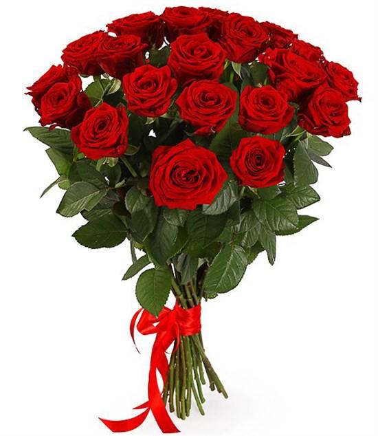 Букет 21 красная роза 60/70 см - фото 7966