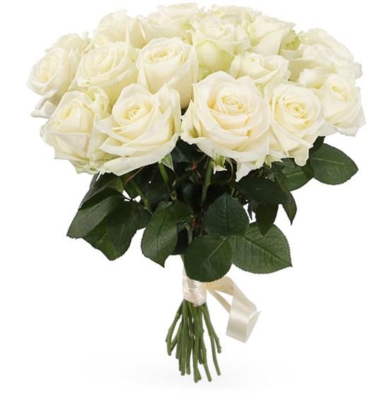 Букет 19 роз Аваланш 60/70 см - фото 7967