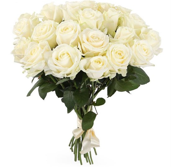 Букет 21 роза Аваланш 60/70 см - фото 7970