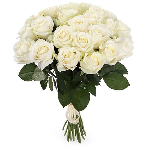 Букет 25 роз Аваланш 60/70 см - фото 7985