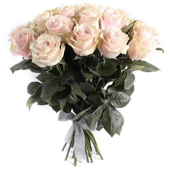 Букет 25 роз Пинк Мондиаль - фото 7994