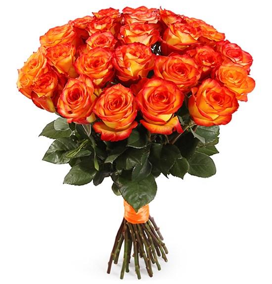 Букет 25 роз Хай Мэджик - фото 7998