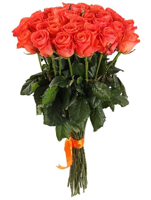 Букет 31 роза Вау - фото 8015
