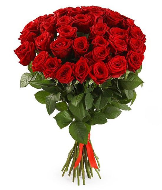 Букет 35 красных роз 60/70 см - фото 8020