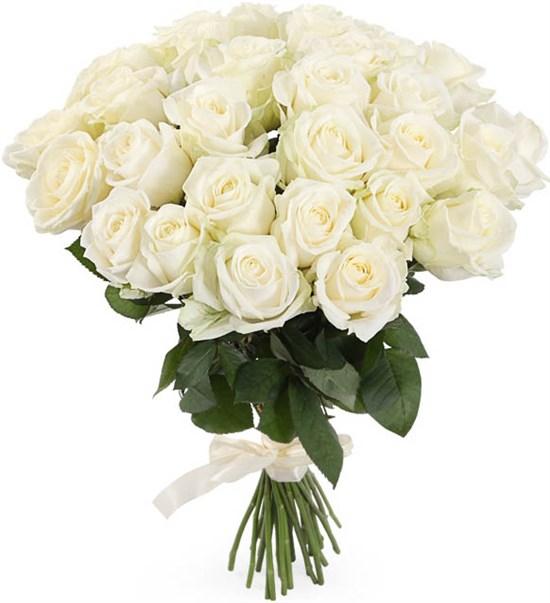 Букет 31 роза Аваланш 60/70 см - фото 8141
