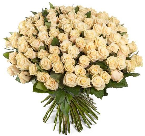Букет 101 роза Талея - фото 8149