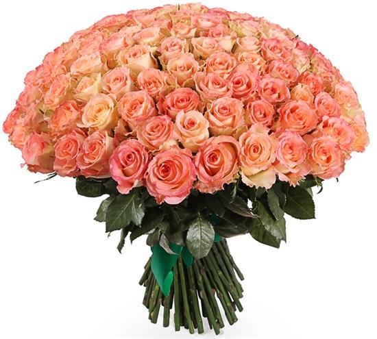 Букет 101 роза Дуэт Классик - фото 8159