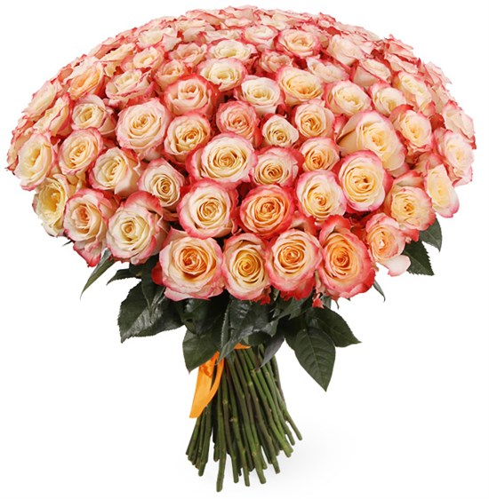 Букет 101 роза Кабаре - фото 8162