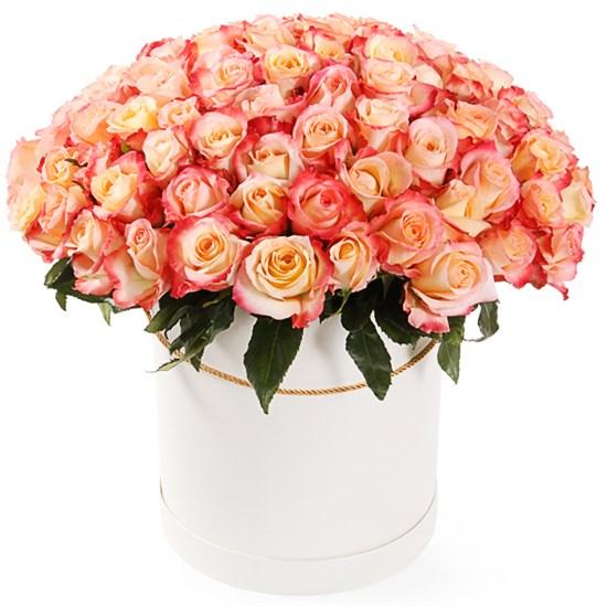 101 роза Кабаре в шляпной коробке - фото 8164