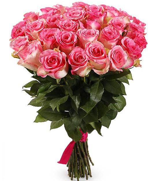Букет 35 роз Малибу - фото 8175