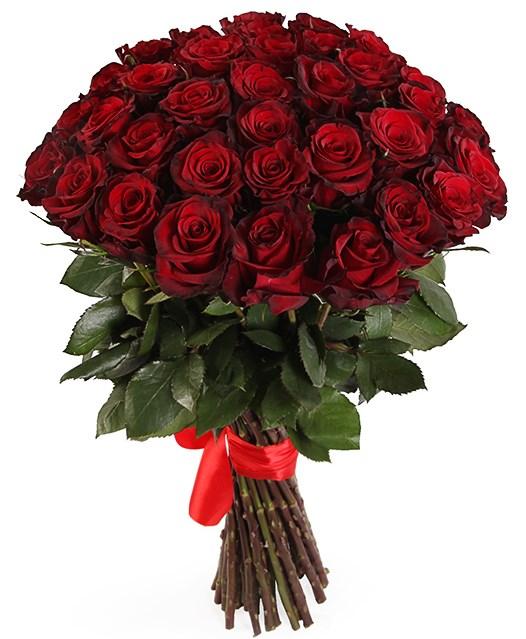 Букет 35 роз Ред Париж - фото 8180