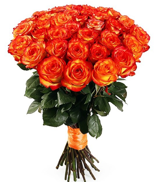 Букет 35 роз Хай Мэджик - фото 8187