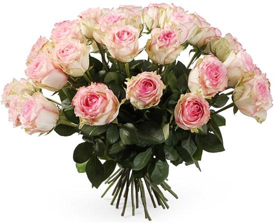 Букет 35 роз Эсперанс - фото 8188