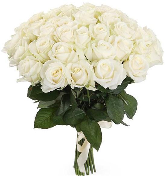 Букет 41 роза Аваланш 60/70 см - фото 8191
