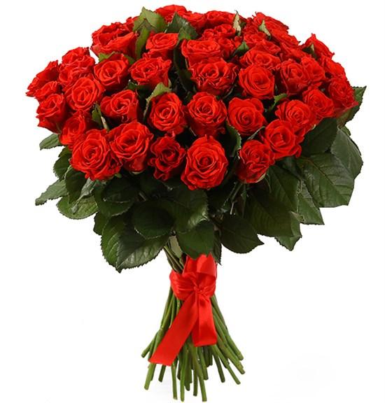 Букет 51 красная роза, 50 см - фото 8227