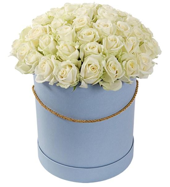 51 роза Аваланш в шляпной коробке - фото 8236