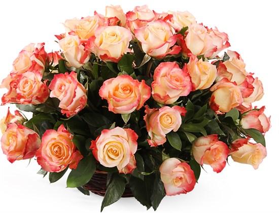 51 роза Кабаре в корзине - фото 8260