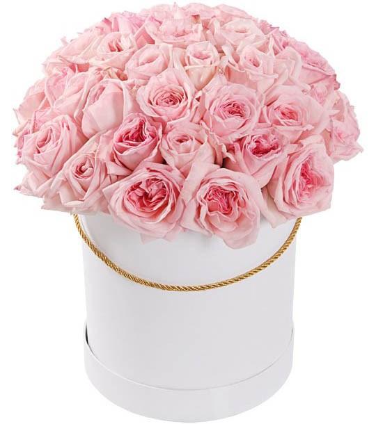 51 роза Пинк О'Хара в шляпной коробке - фото 8274