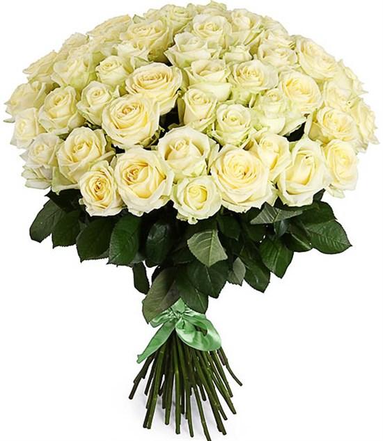 Букет 51 роза Полярная звезда - фото 8275