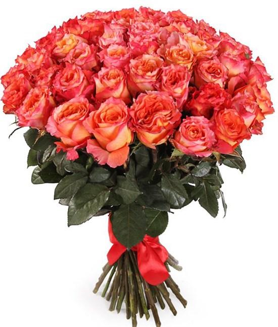 Букет 51 роза Фри Спирит - фото 8280