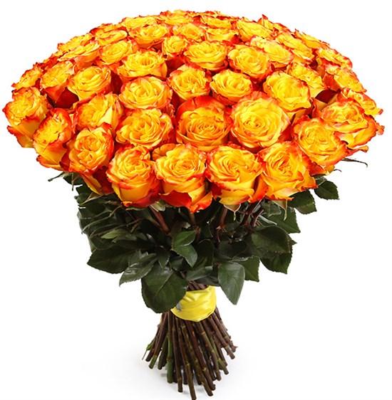 Букет 51 роза Хай Еллоу - фото 8281