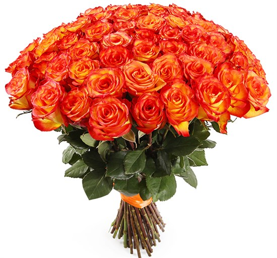 Букет 51 роза Хай Мэджик - фото 8284
