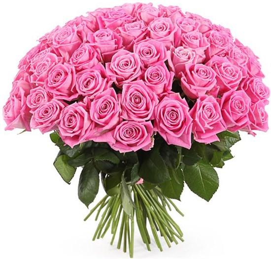 Букет 71 роза Аква - фото 8312