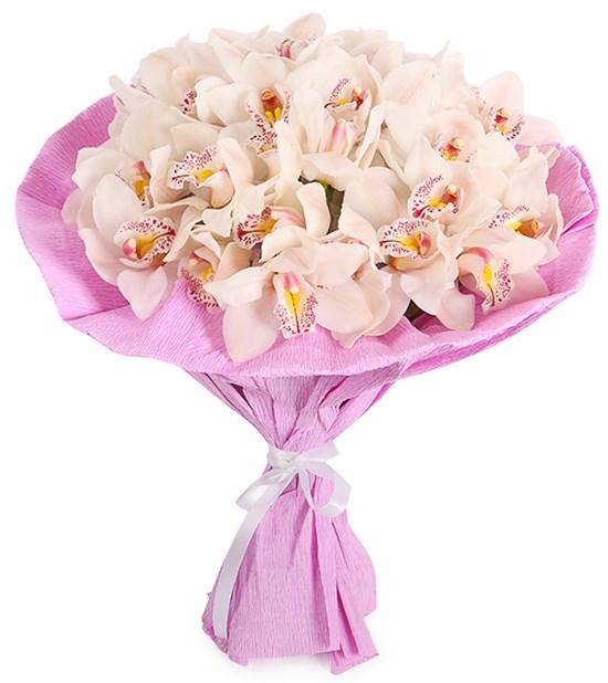 Букет из орхидей Ванильное мороженое - фото 8381