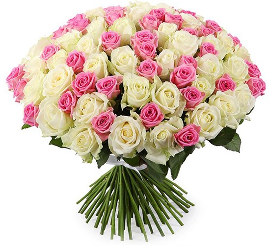 Букет Нежное настроение, 101 роза - фото 8436