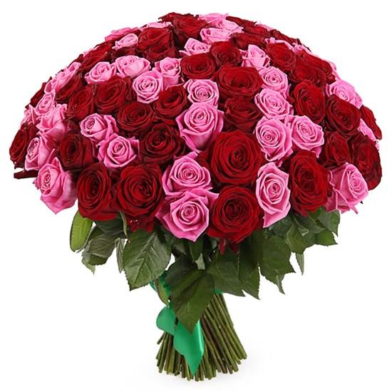 Букет Страсть и нежность, 101 роза - фото 8497