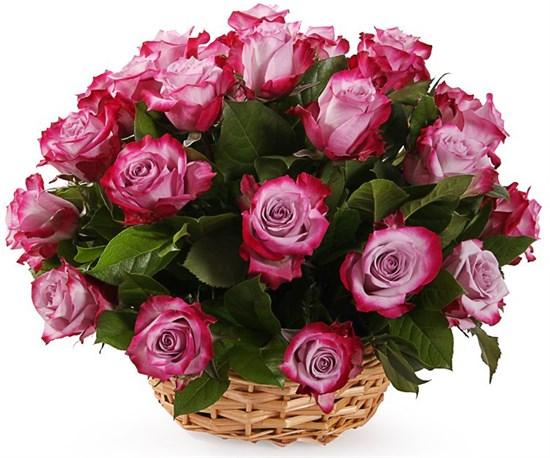 35 роз Дип Перпл в корзине - фото 8537