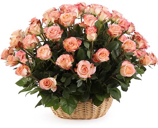 51 роза Дуэт Классик в корзине - фото 8545