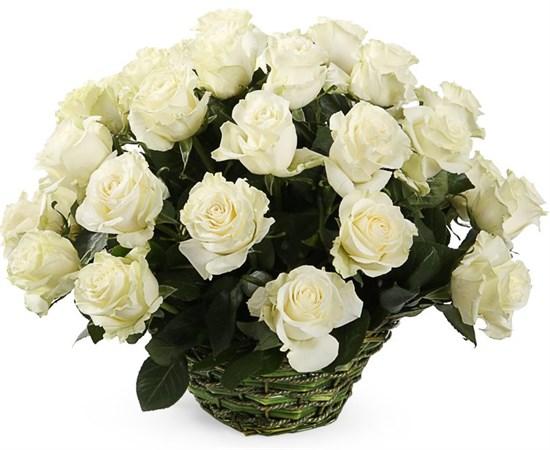 35 роз Мондиаль в корзине - фото 8552