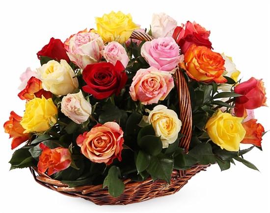 Фламандская легенда (35 роз) в корзине - фото 8553