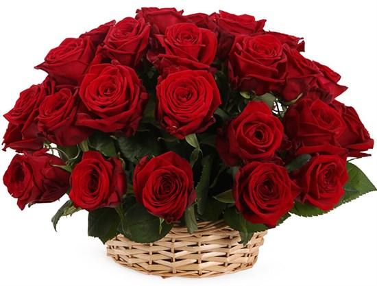 35 красных роз в корзине - фото 8554