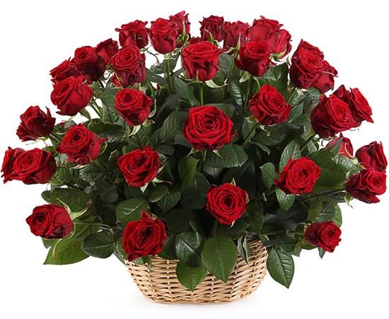 51 роза в корзине - фото 8558