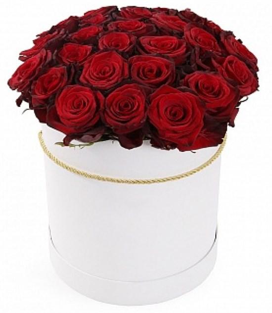 из 25 красных роз Ред Париж в шляпной коробке - фото 8561